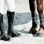 Prezzi lezione di equitazione Roma